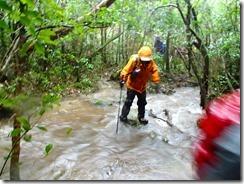 2-06登山道は水があふれています、ここは濡れてもやむなし