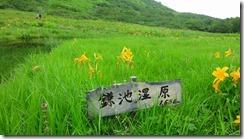 1-03鎌池湿原
