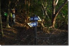 11林道分岐