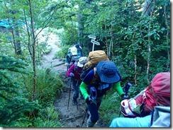 5-01 5日目、北アルプス三大急登ブナ立尾根を下ります