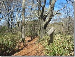 15 小爪峠への稜線歩き