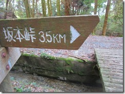 41 坂本峠へ向かいます