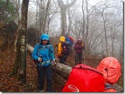 2-07倒木が登山道を塞いでいます