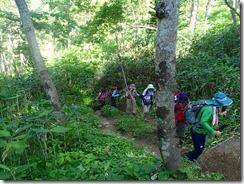 05最初は樹林帯の中を登っていきます