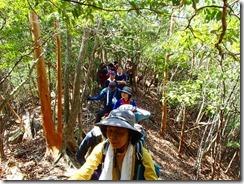 1-02自然林の中を登ります