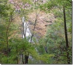 23 遠くから蜻蛉の滝