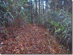 03歩きやすい登山道