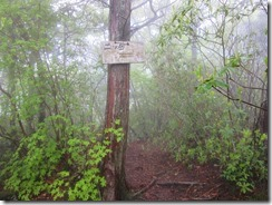 08二ツ岳への道標