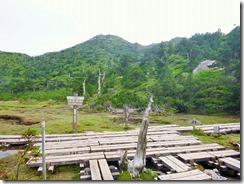 2-08花之江河P1030071