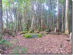 14P檜原山到着1100478
