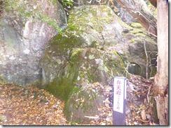 20弁天岩P1100486