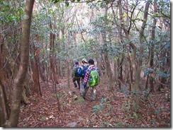 06新村分岐までのなだらかな稜線歩き