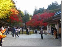 29千如寺の紅葉