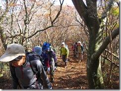 19雷山への最後の登り