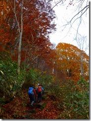 2-02登山道