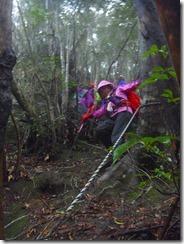 1-10滝コースが通行止めなので往復になりました、急登を下ります