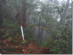 1-07滝コース下山口、通行止めのロープがあります