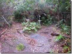 1-08次郎岳太郎岳分岐、先に次郎岳へ上ります