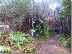 1-19分岐に戻り太郎丸岳へ向かいます