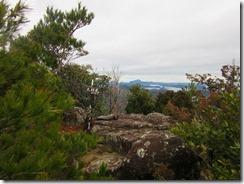 1-20太郎丸岳山頂