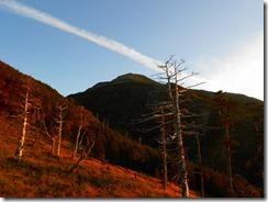 3-03朝焼けと飛行機雲