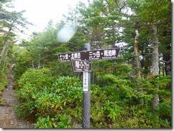3-08三ツ岳分岐、横岳を目指します