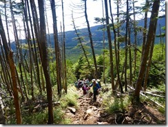 2-10急登の登山道