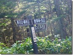 2-05大石峠、オトギリ平分岐