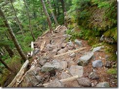 3-15登山道