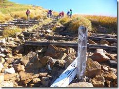 13 8合目、木階段状の登山道