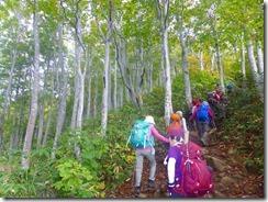 06美しい樹林帯の中を登ります